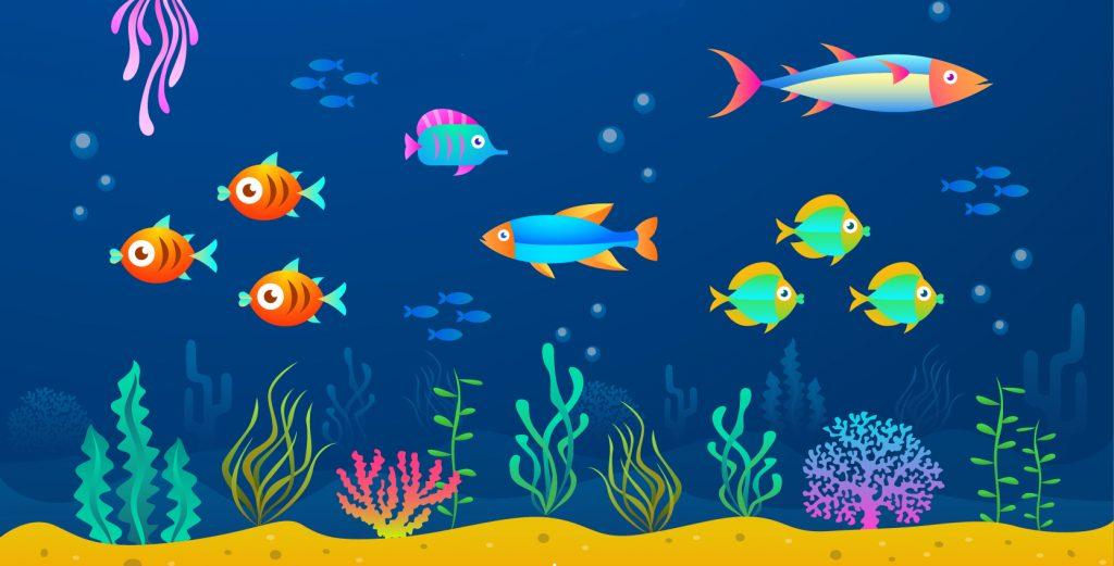 Todo lo que necesitas saber sobre el color del pescado